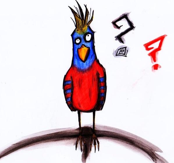 question_bird_by_tobiburtonfreak-d48n6bn